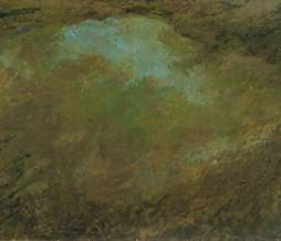 1998, Puddle, oil on canvas, 102 x 250 cm