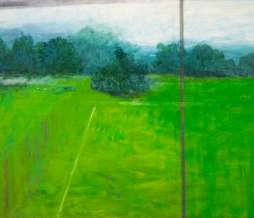 2009, Football field and shrubs II, oil on canvas, 80 x 100 cm